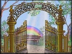 Sateenkaarisilta version of the Rainbow Bridge Poem